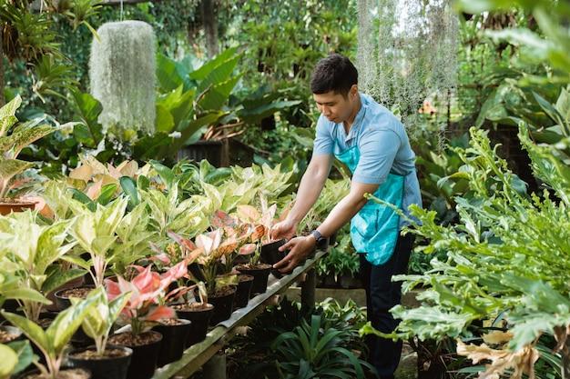 庭で働いている男性の花屋