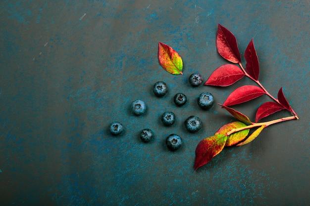暗い背景上の葉とブルーベリーの果実。美しい秋の背景