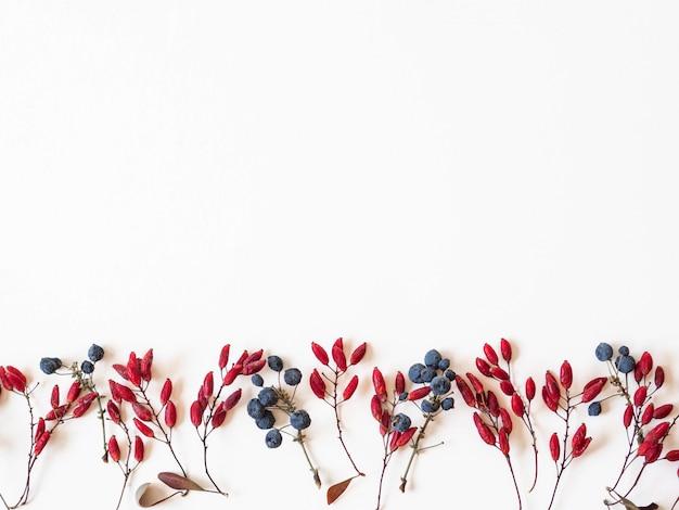 Синие и красные ягоды и листья границы, изолированные на белом