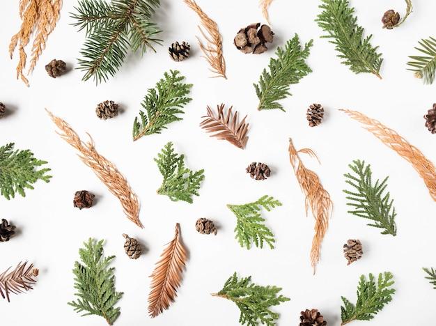 冬の乾燥した植物の部分のフラットレイアウト創造的な自然な背景