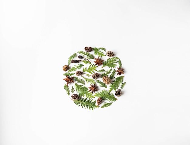 植物の部分のフラットレイアウト創造的な自然なレイアウト円