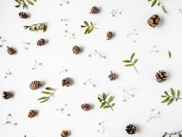 コーン、乾燥した緑の葉、白い花の自然な創造的なフラットレイアウトコンポジションの背景