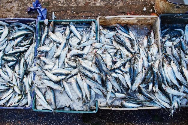 Многие атлантические сардины рыбы продаются в коробках