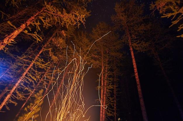 空を飛んでいる森の中で焚き火の夜から火花