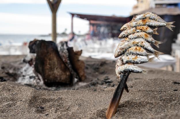 スペインの海岸で焼かれた大地に刺されたイワシの串焼き