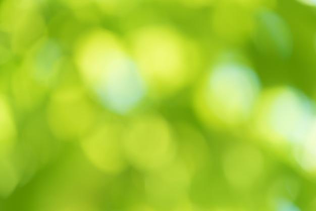 抽象的な背景の緑の自然をぼかし。