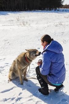 その少女は、雪が降り注ぐ日当たりの良い畑で灰色オオカミの訓練に取り組んでいます。