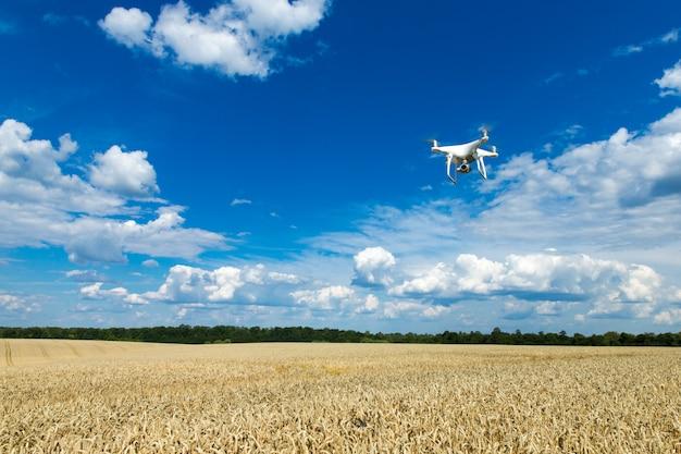 Летающий беспилотник над полем пшеницы