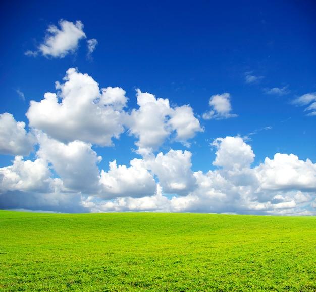 Травяное поле с облачным небом
