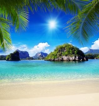 晴れた日に熱帯の海