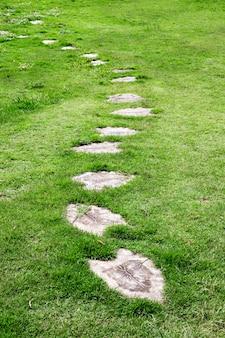 庭の石の道