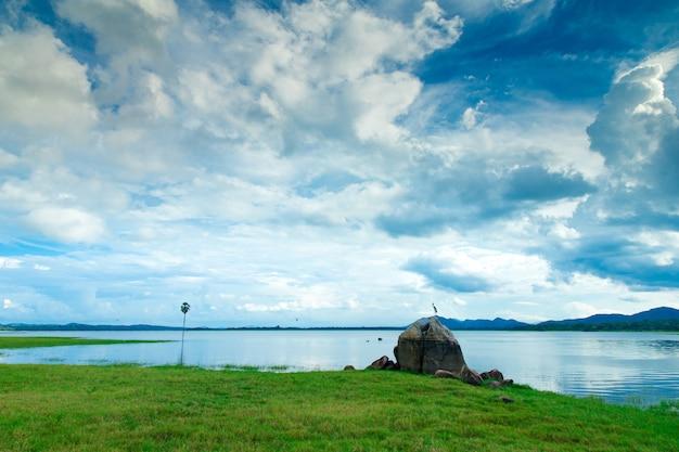 スリランカ湖、スリランカの風景、水の木、湖の木