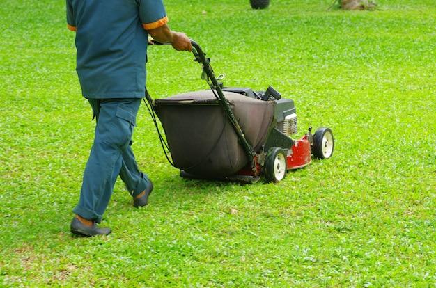 芝生を刈る