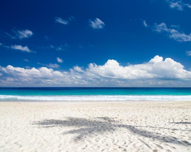 Пляж и красивое тропическое море. тропический пляж на мальдивах