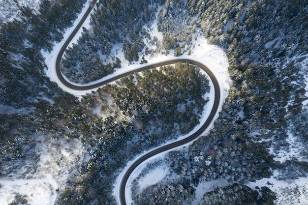 美しい冬の森と道