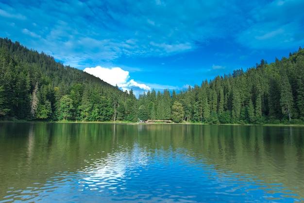 カルパティア山の日当たりの良い風景