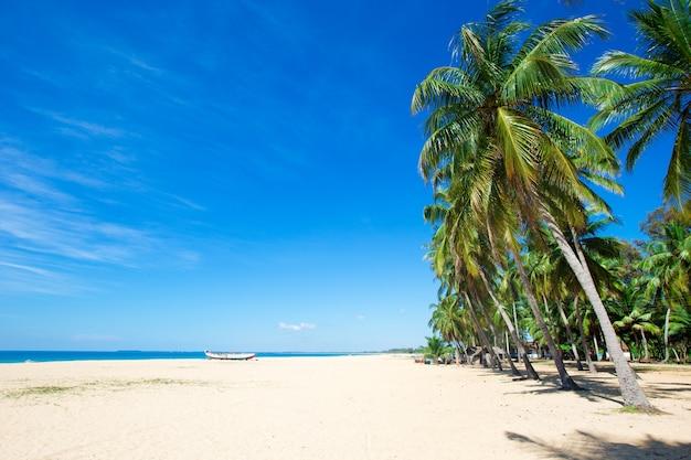 Тропический пляж в шри-ланке. летний отдых и отпуск концепции для туризма.