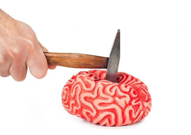 ハンマー打撃および血のこぼれた人間の脳のゴム