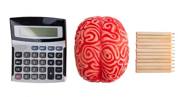 論理と創造性の間の脳半球の概念