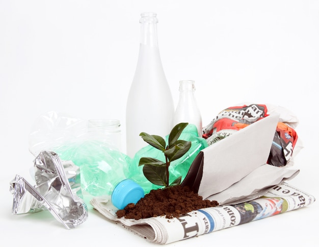 ゴミから生長する新植物