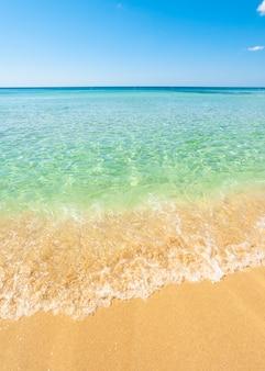 青緑色の水とサレントの黄金のビーチの美しい海。
