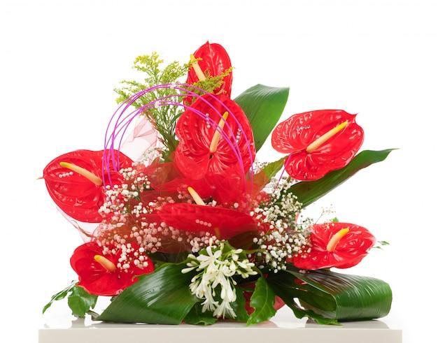 赤いアンスリウムの花のバスケット