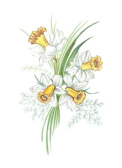 花水仙の現実的な色鉛筆花束