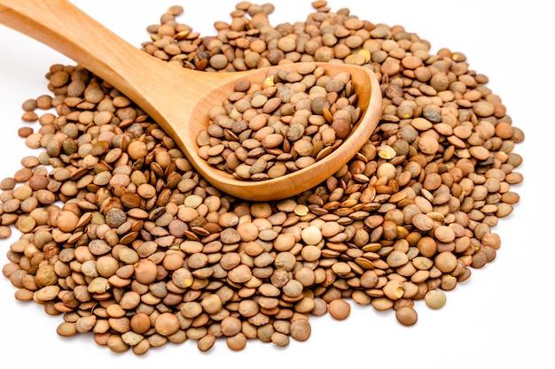 白地に茶色のレンズ豆