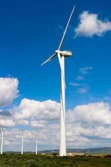 フィールドの風車