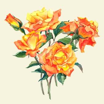 黄色の庭のバラと水彩画カード