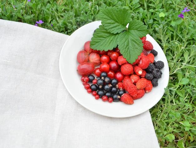 新鮮な夏の果実