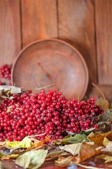 赤い果実とガマズミ属の木の枝