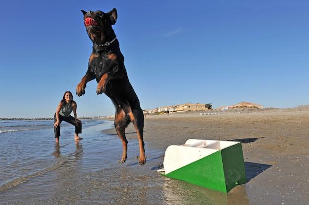 Флайбол на пляже