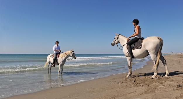 休日の乗馬