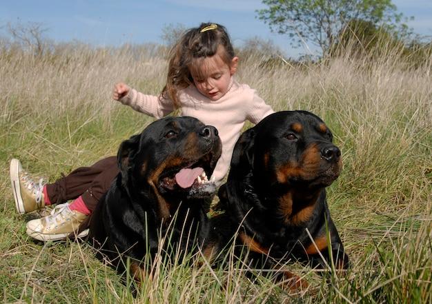 危険な犬と子供