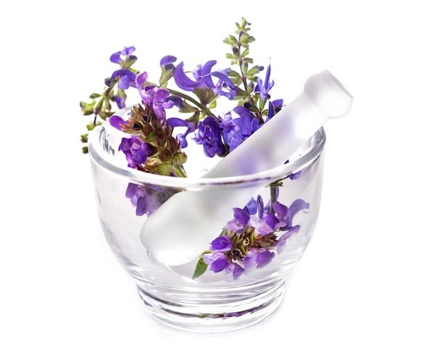 モルタルと花