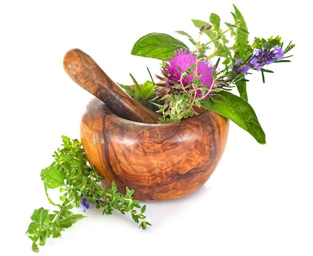 Раствор и растения