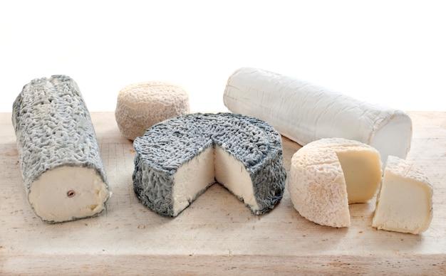 スタジオでヤギのチーズ
