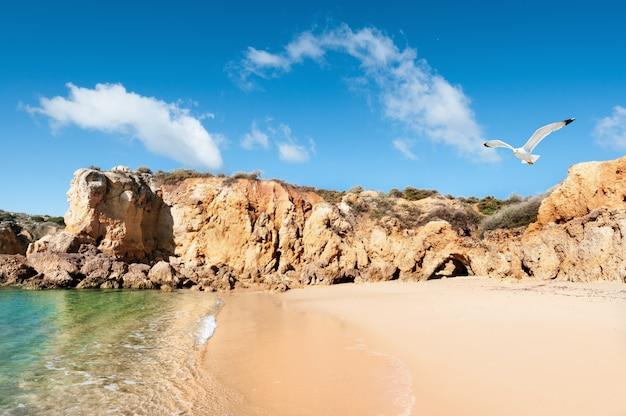 ポルトガル、アルブフェイラの黄金のビーチ