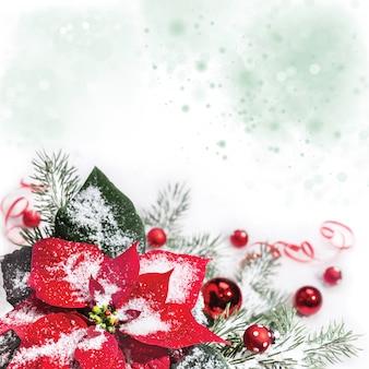 コピースペースとポインセチアのクリスマス背景