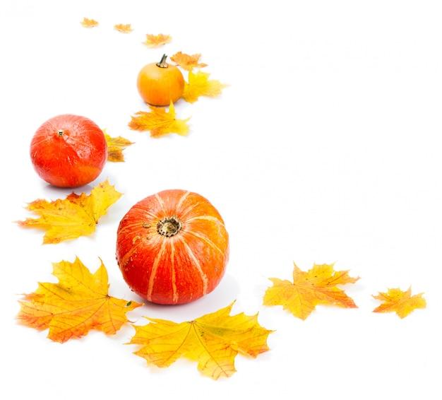 秋の装飾的なボーダー