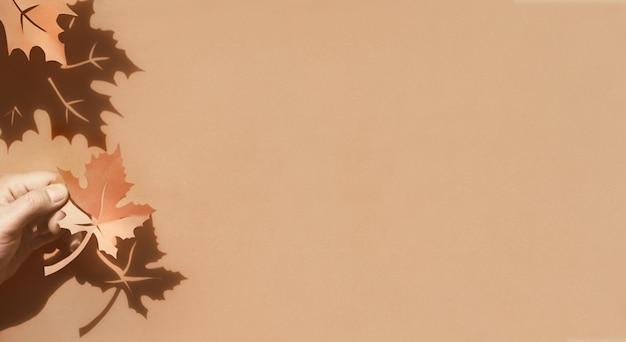 秋の紅葉の影、平らな紙の背景にコピースペースを置く