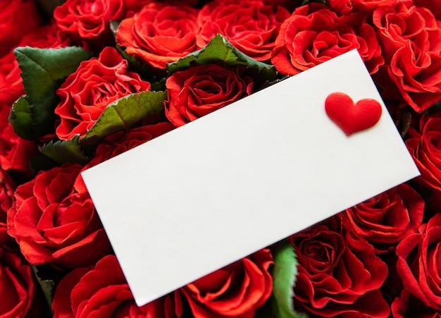 美しい赤いバラ