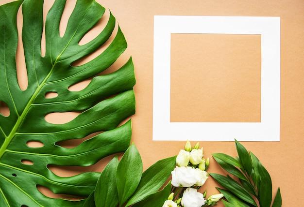 Белая рамка и листья монстра