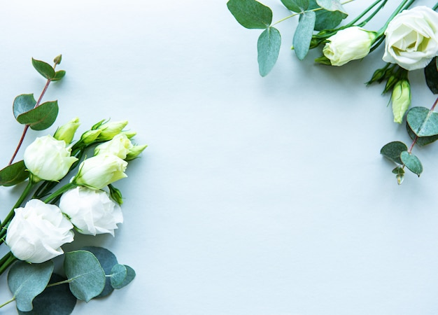 バレンタインの青い背景に白いトルコギキョウの花