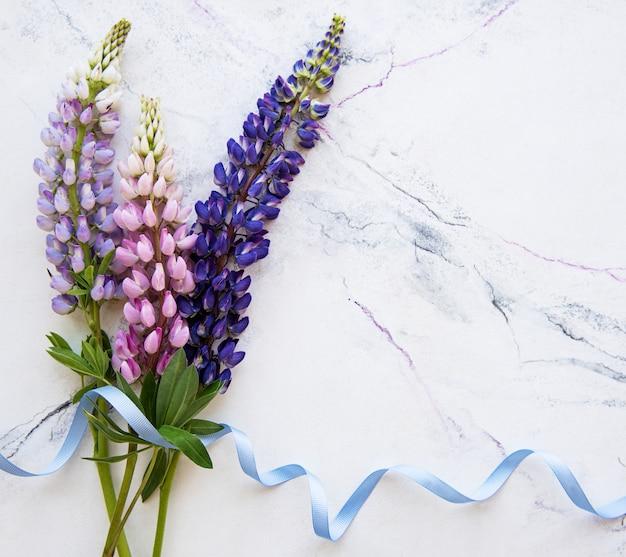 ピンクと紫のルピナスの花の境界線