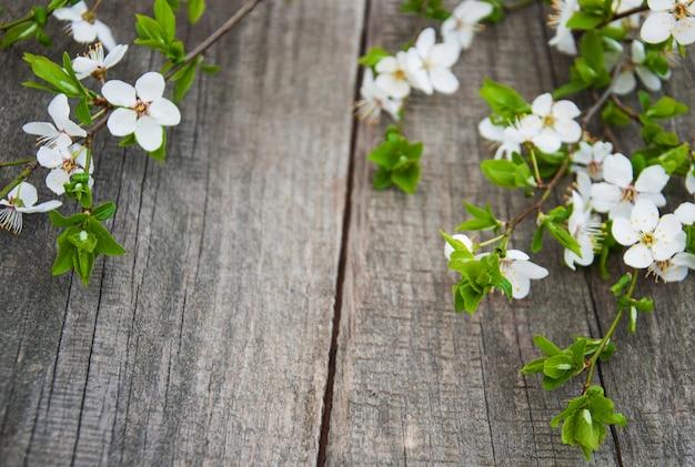 春のチェリーの花