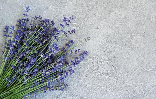 コンクリートの背景に新鮮なラベンダーの花