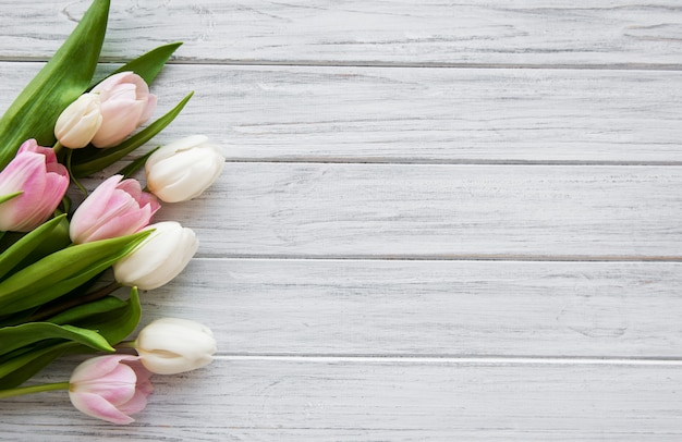 Розовые весенние тюльпаны
