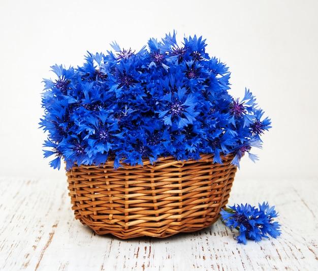青いヤグルマギク
